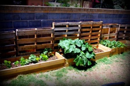 Gallery For Vertical Vegetable Garden Pallet