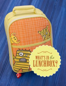 healthy-lunchbox-ideas-eco copy