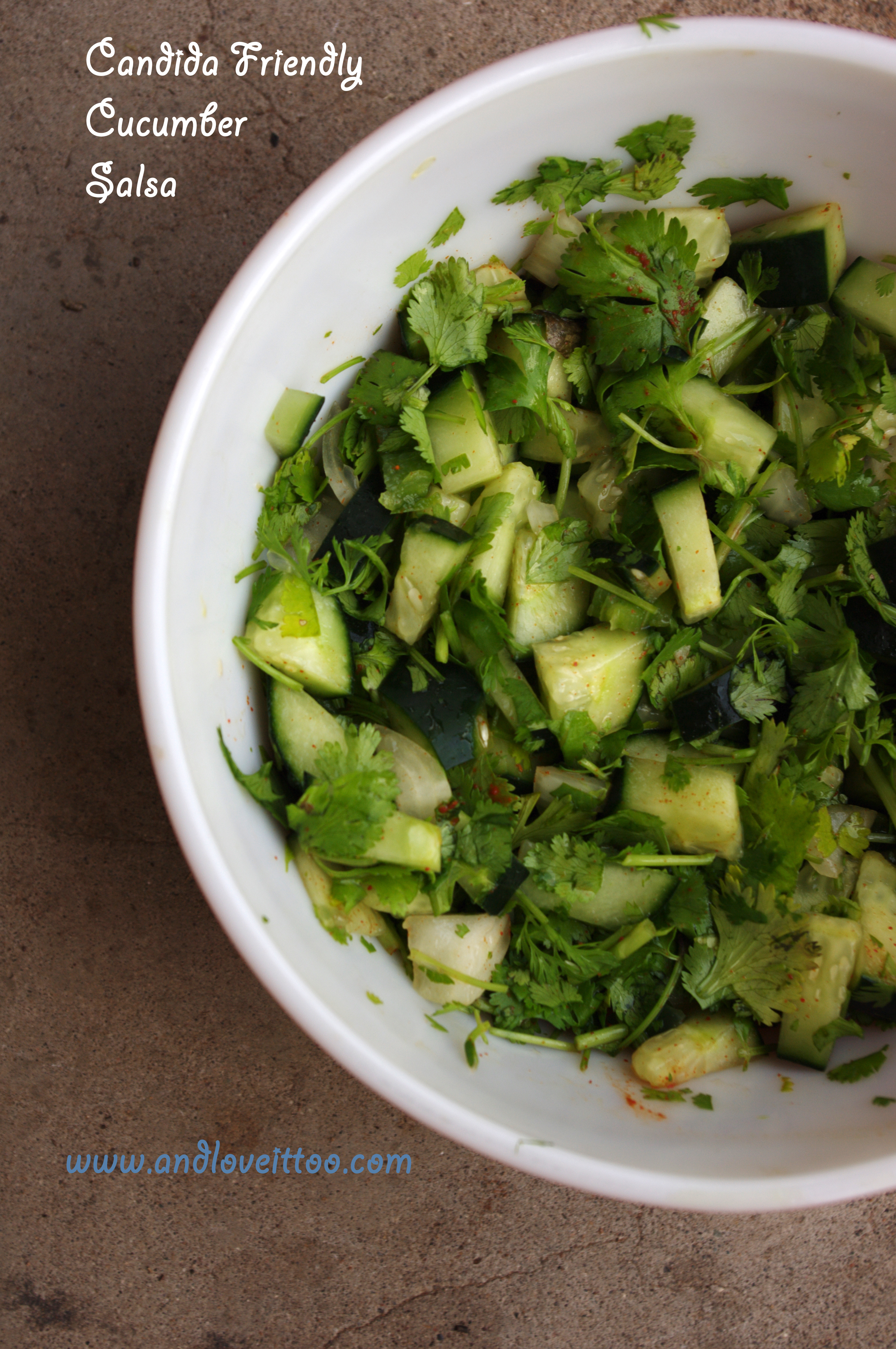 Candida Friendly Cucumber Salsa