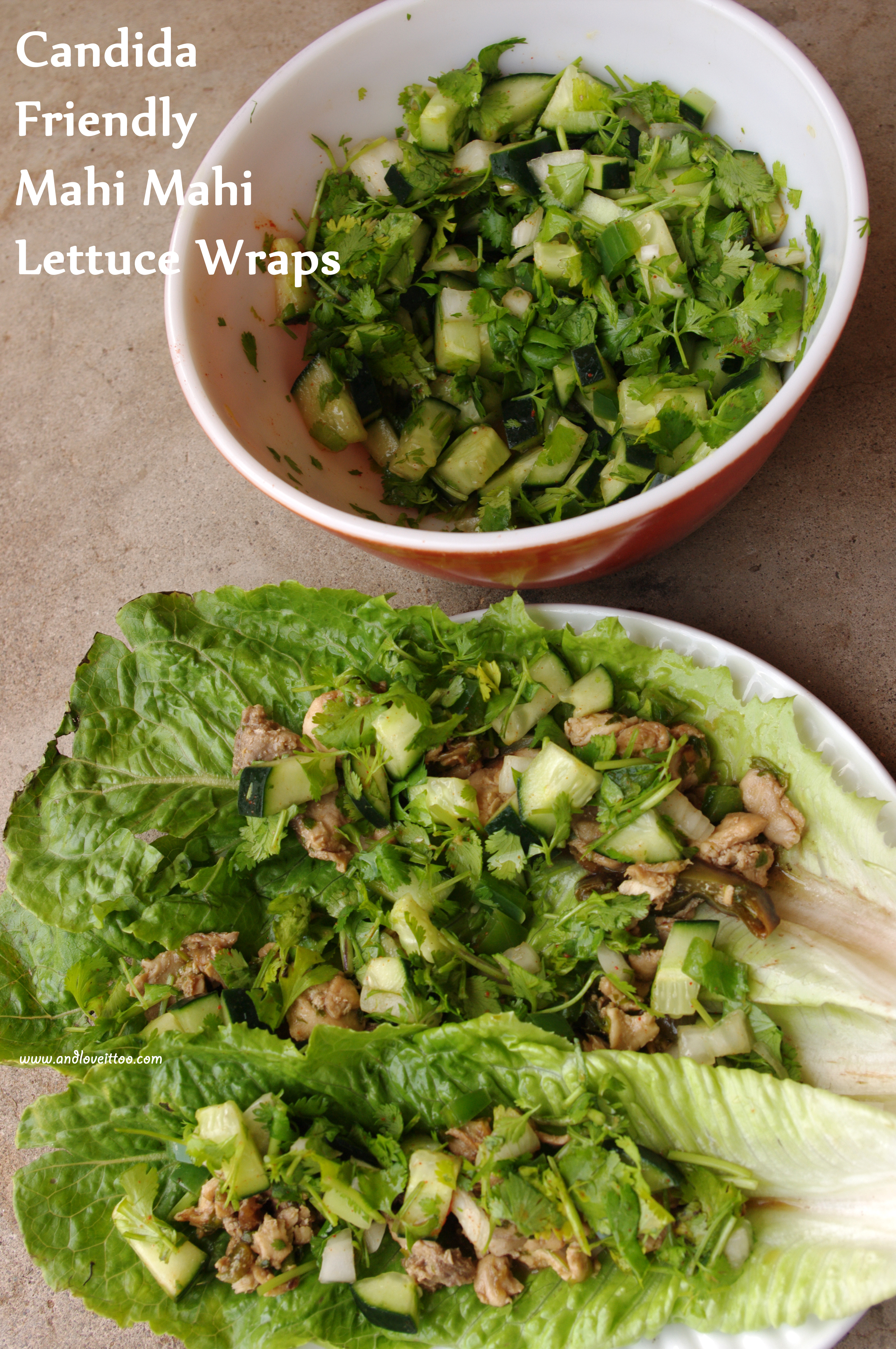 Candida Friendly Mahi Mahi Lettuce Wraps