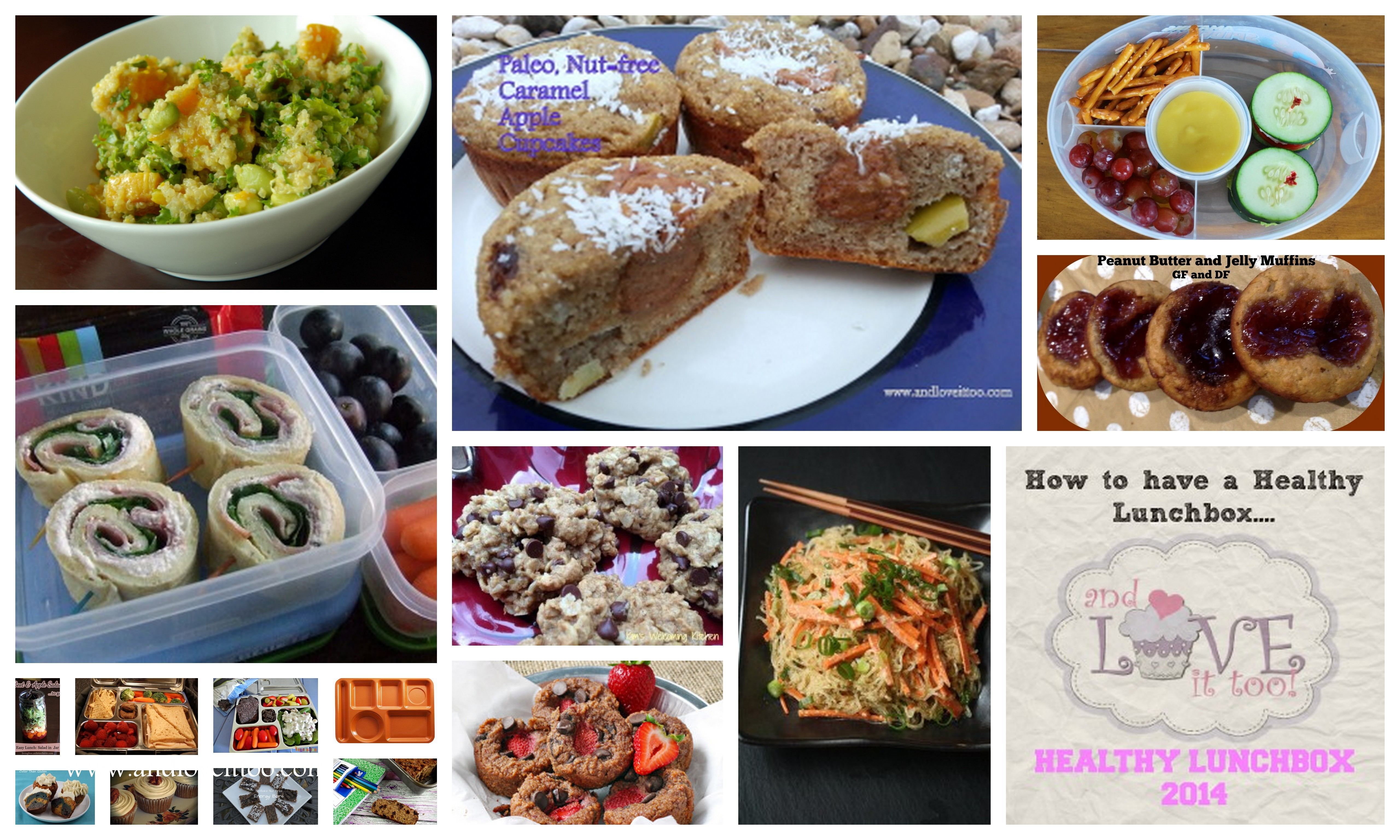 Healthy Lunchbox 2014: The Ultimate Collection and Giveaway Extravaganza!