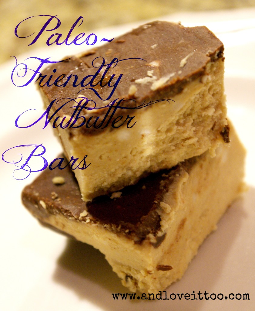 Nutbutter Bars (Paleo Friendly, Nut-Free Option Listed)