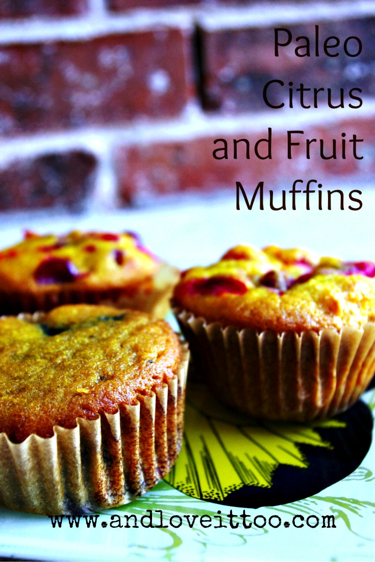 fruit muffins 2