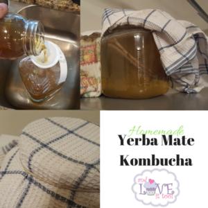 Homemade Yerba Mate Kombucha (4)